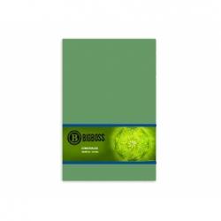 Goma Eva 20 x 30 cm 10 unidades verde claro Big Boss