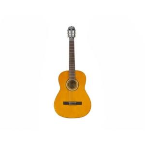 Guitarra Acustica 39 ARCG44 NT Vizcaya